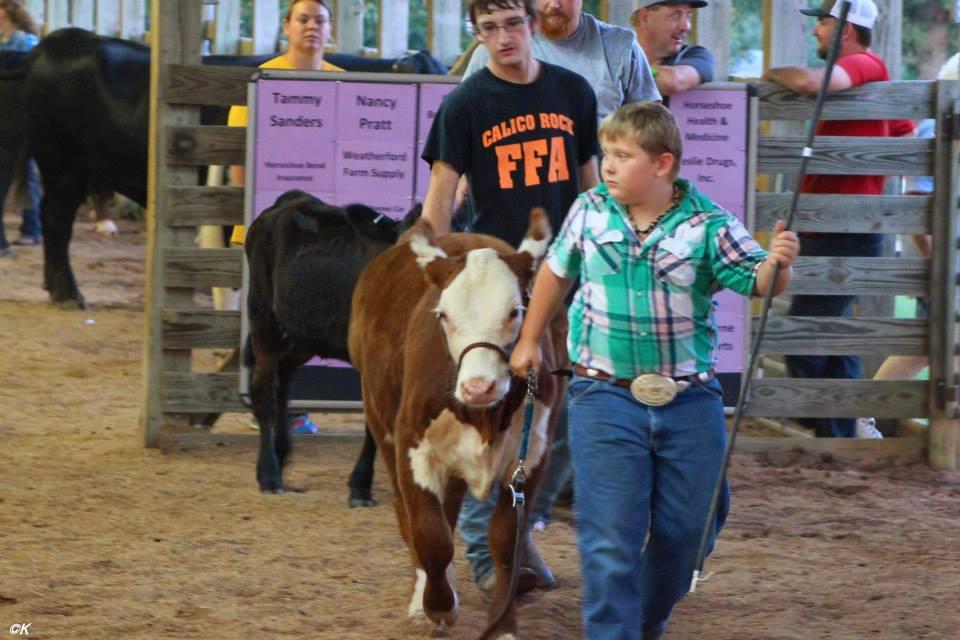Izard County Fair